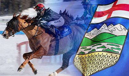 horse_racing_in_alberta
