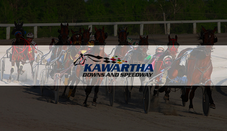Kawartha Downs Live Racing