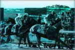Mobile Sports Betting Could be Huge for NYS Horse Races
