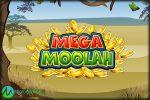 Microgaming Releases List of Mega Moolah Winners